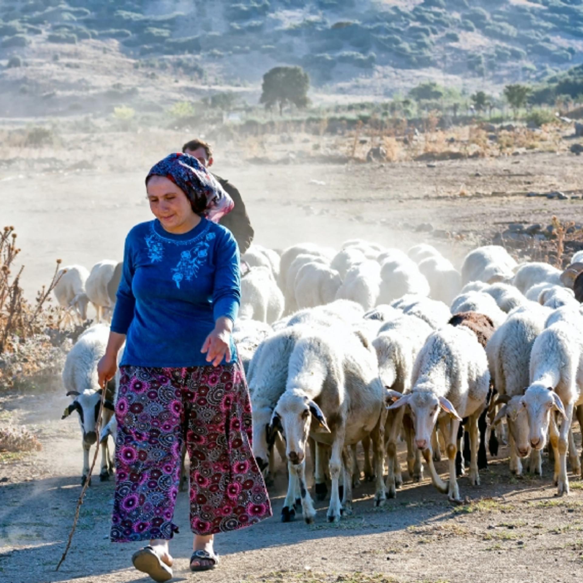 koy_gazipasa_turkish_way.jpg