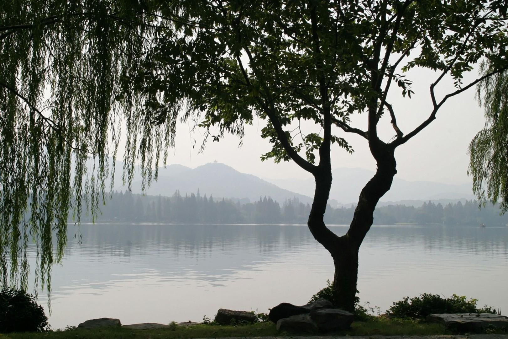 china-1013614_1280.jpg