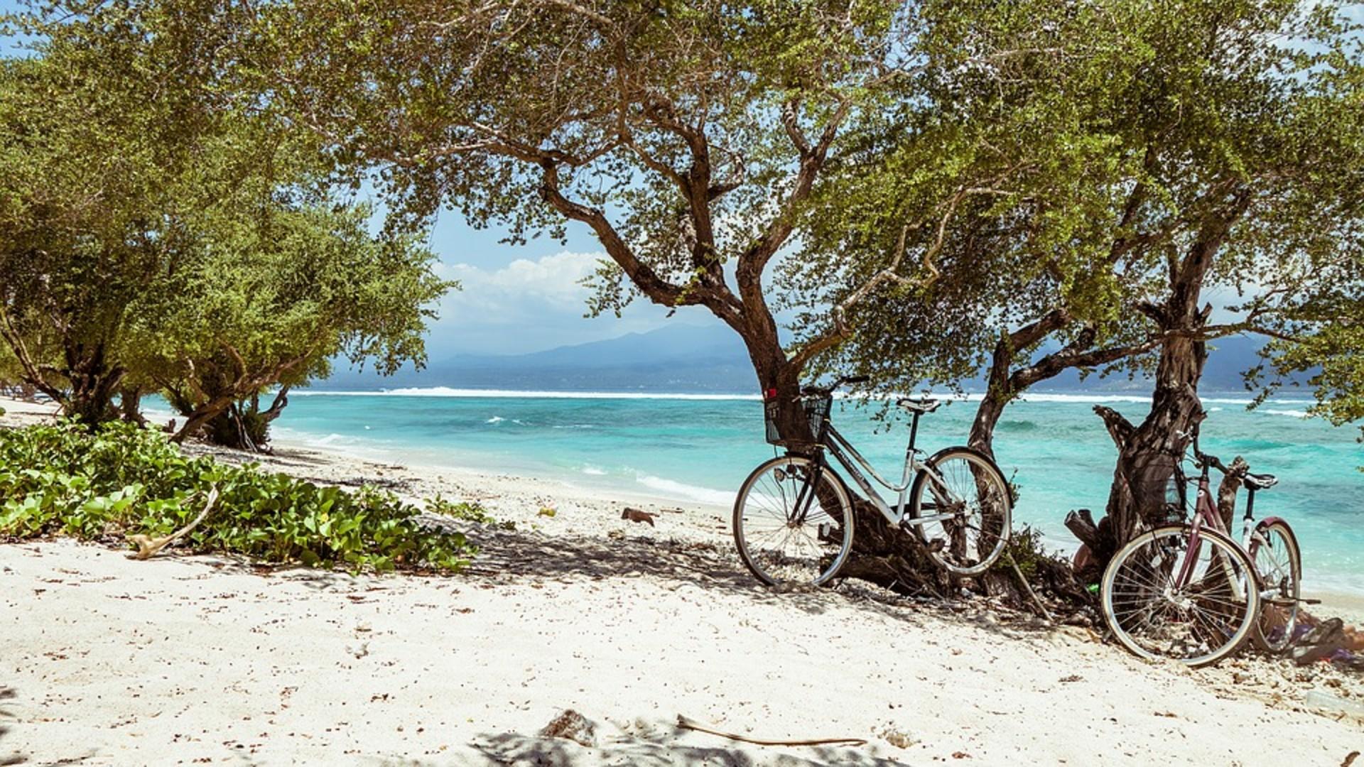 bike-2058001_960_720.jpg