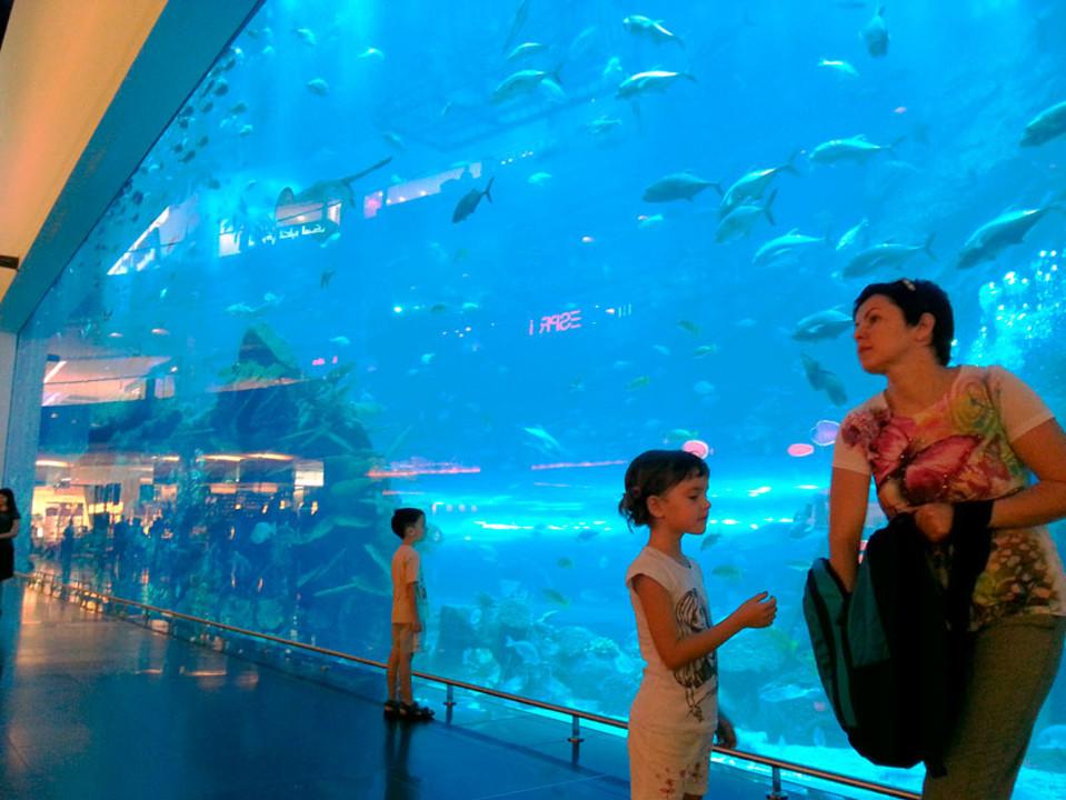 аквариум-в-дубай-молл.jpg